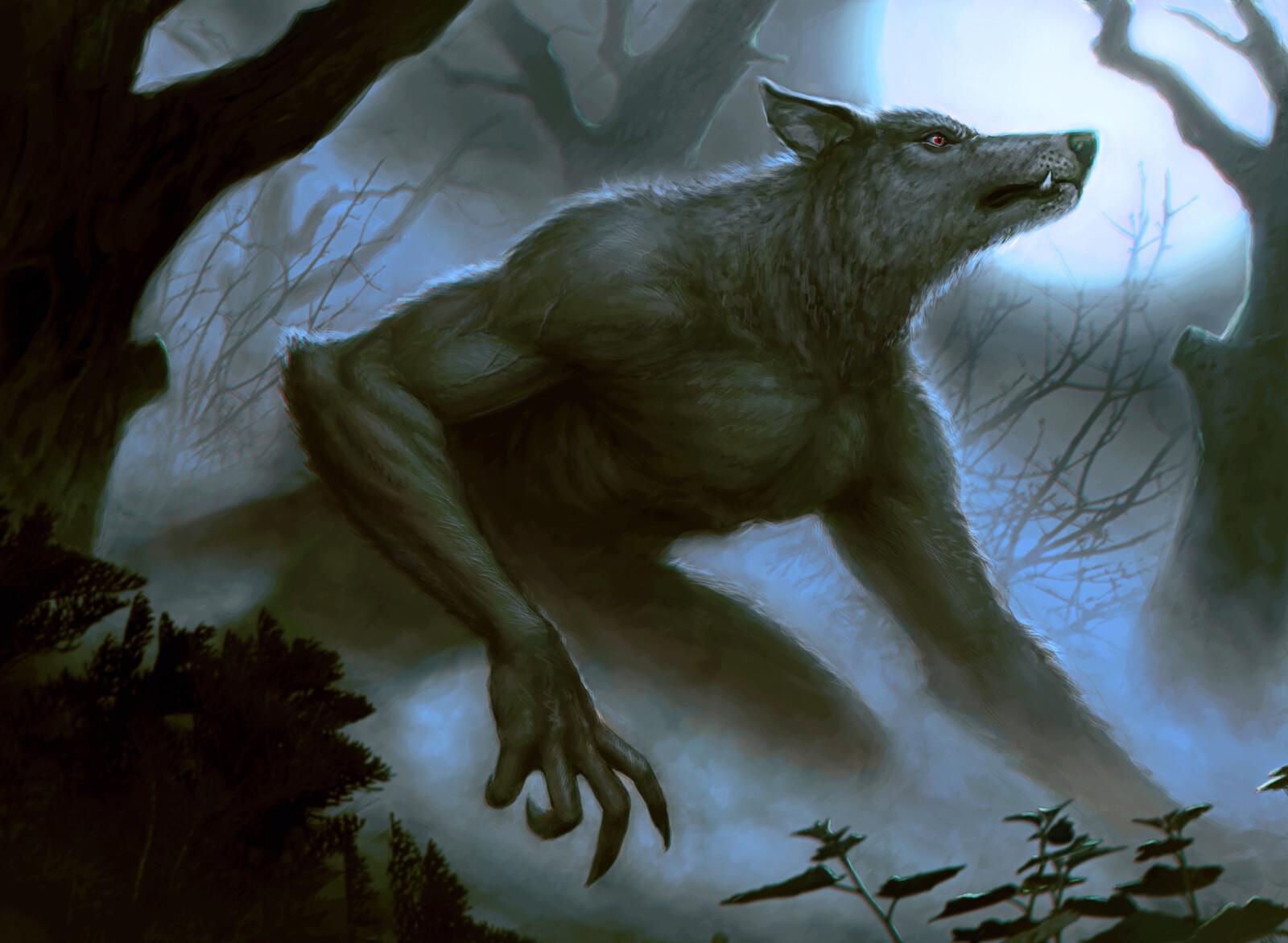 Moonlit Tracker