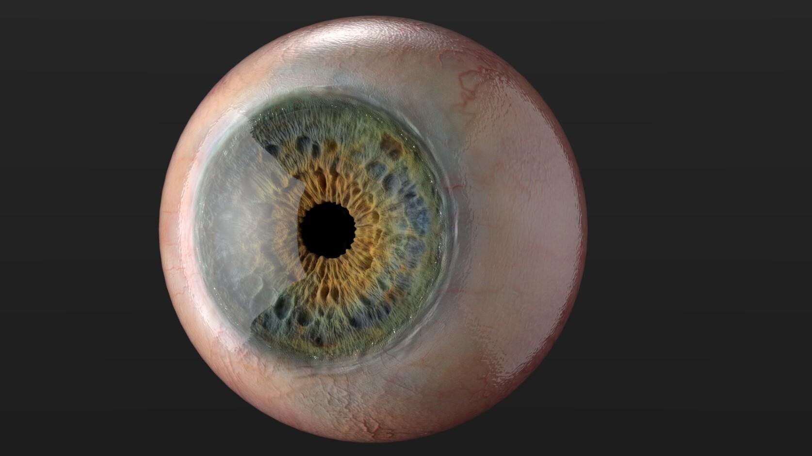 Chingiz jumagulov eye version10 002