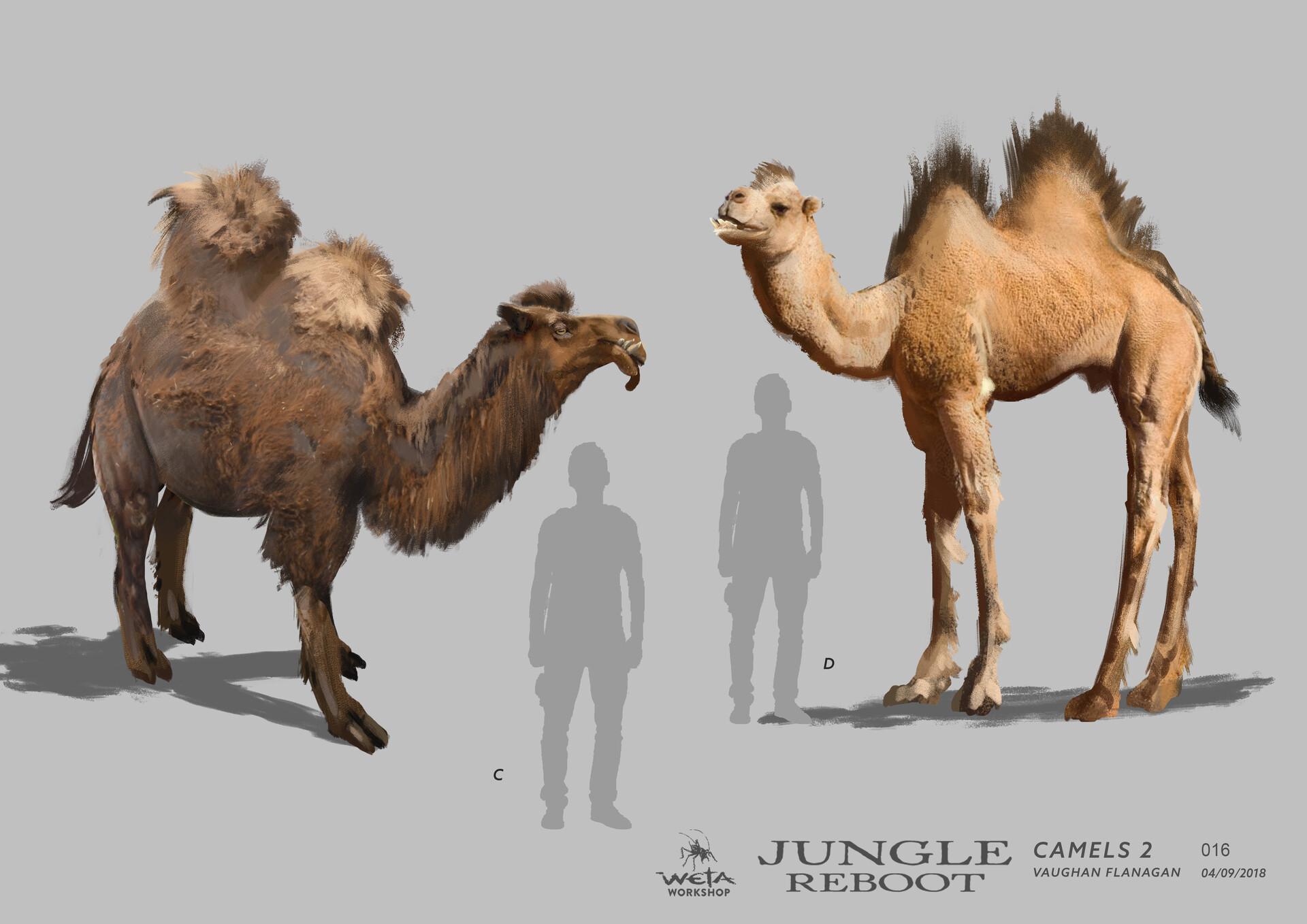 Weta workshop design studio 016 jr camels 2 vf