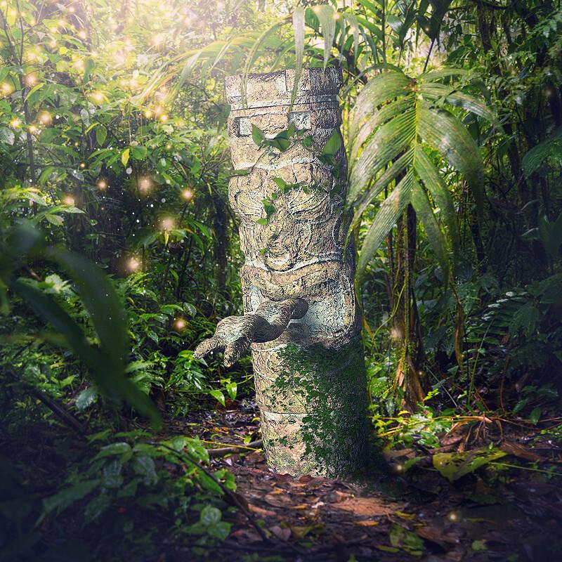 Secrets of jungle