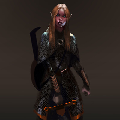 Sebastian diaconu elf fighter