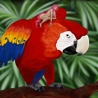 Angie c sweet parrot