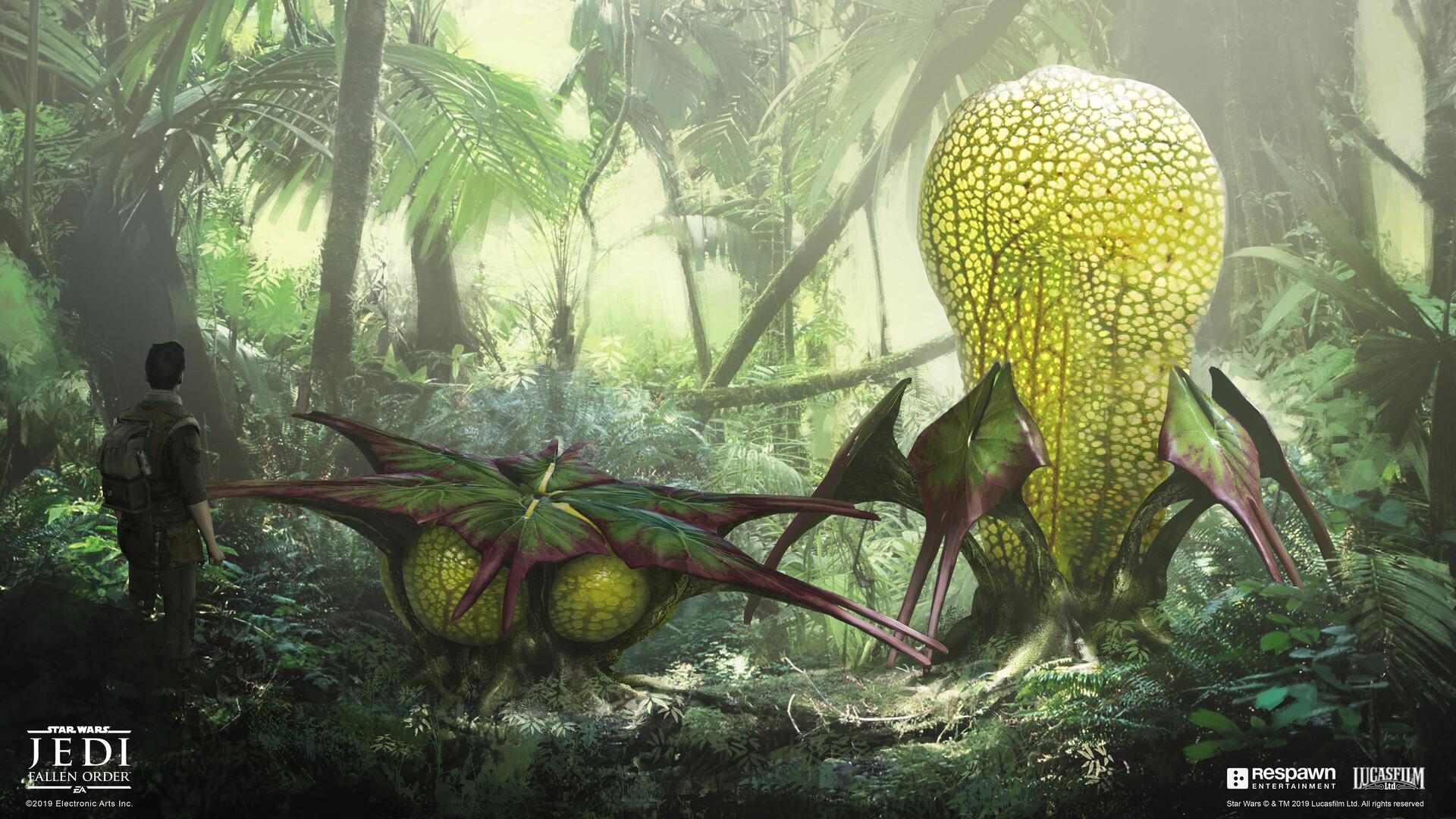 jean-francois-rey-lung-plant.jpg?1580010