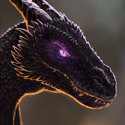 Attila gerenyi dragon illustration final x