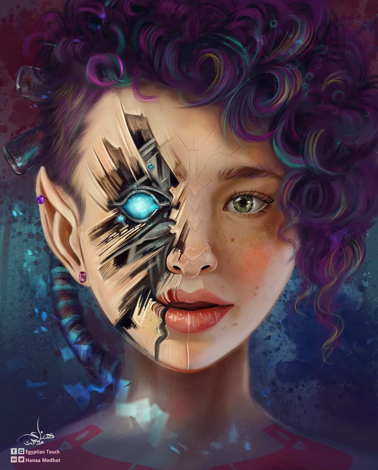 Transformer faerie