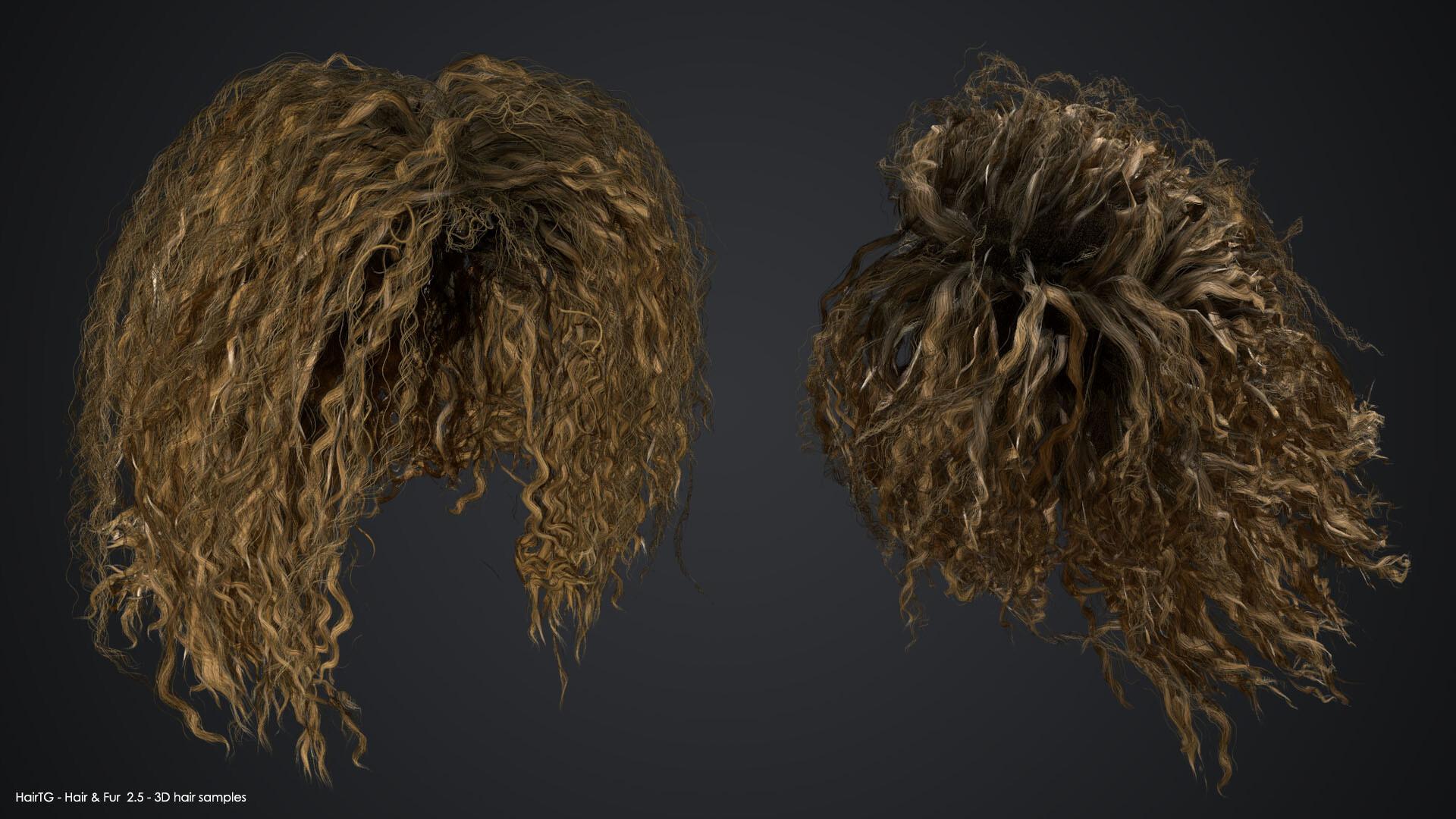 Sample 3D hair models