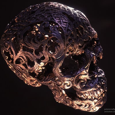 Pete mc nally petemcnally skull 03