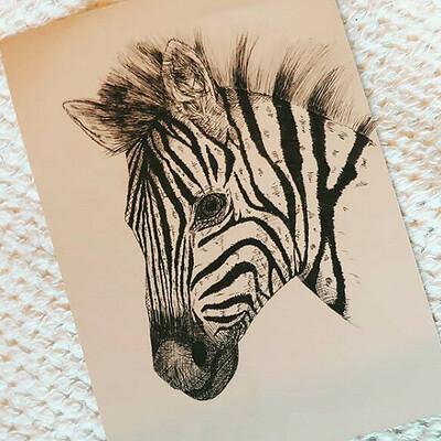 Robert van der slik zebra