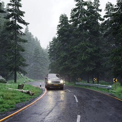 Shabeer mv misty woods