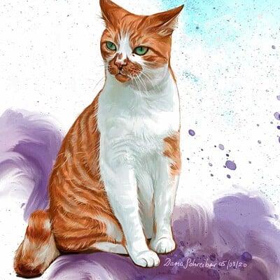 Daria schreiber cat studies hg