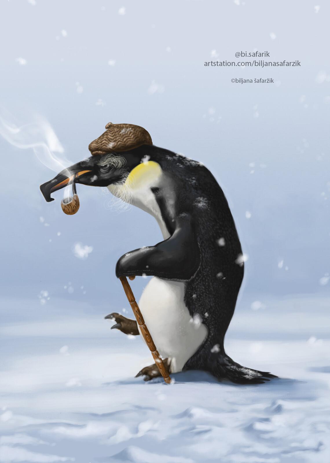 Grandpa Penguin