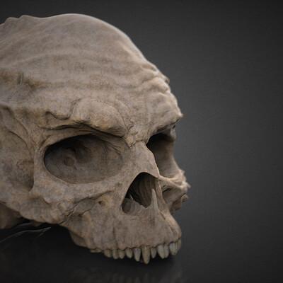 Jake hempson jake hempson ifrank z skull