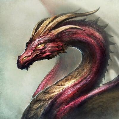 Zsolt kosa dragon2