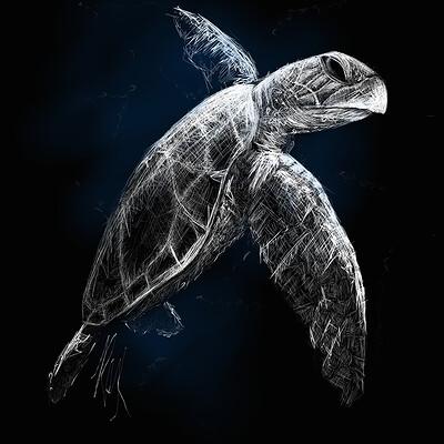 Roxane lapa turtle