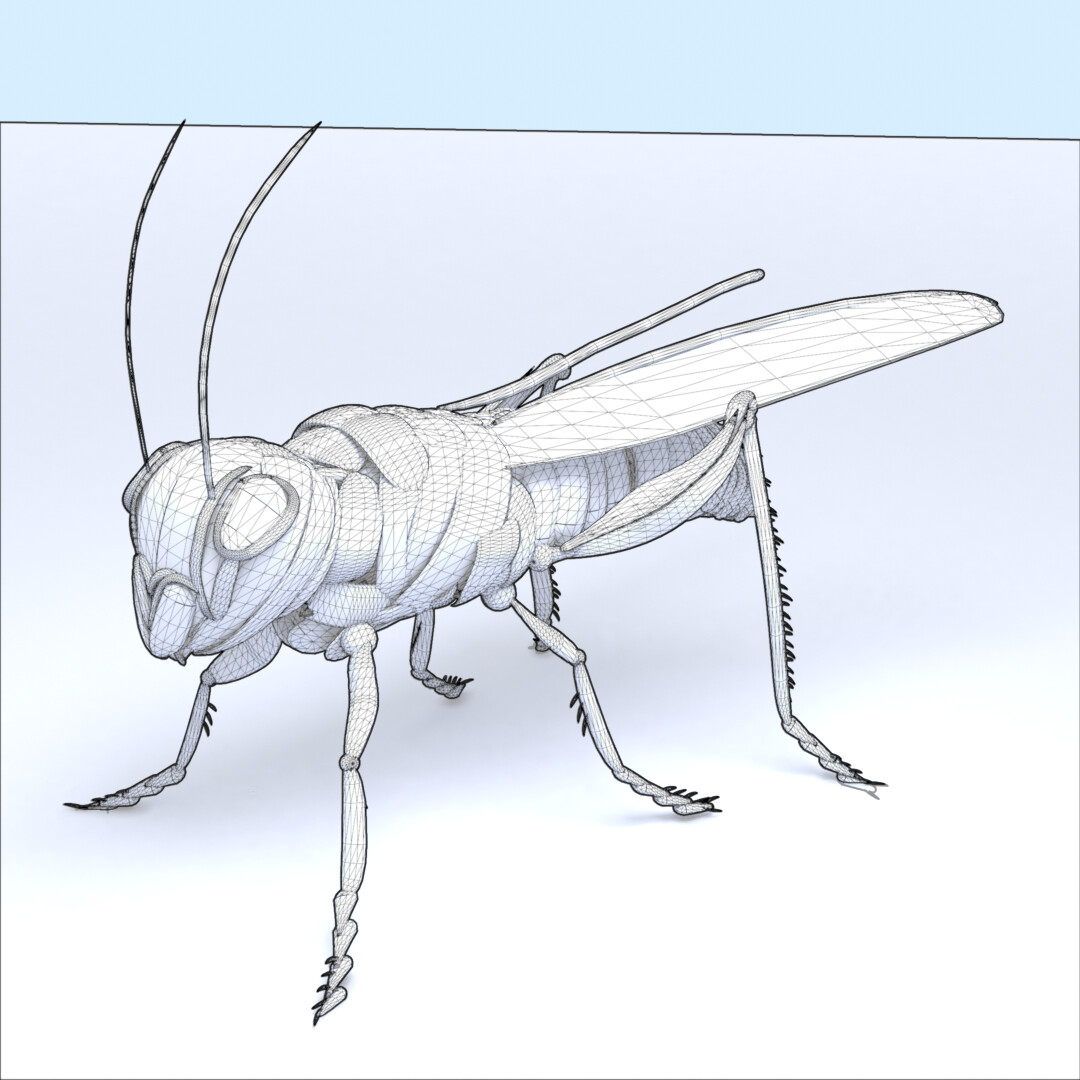 Sketch style wireframe render