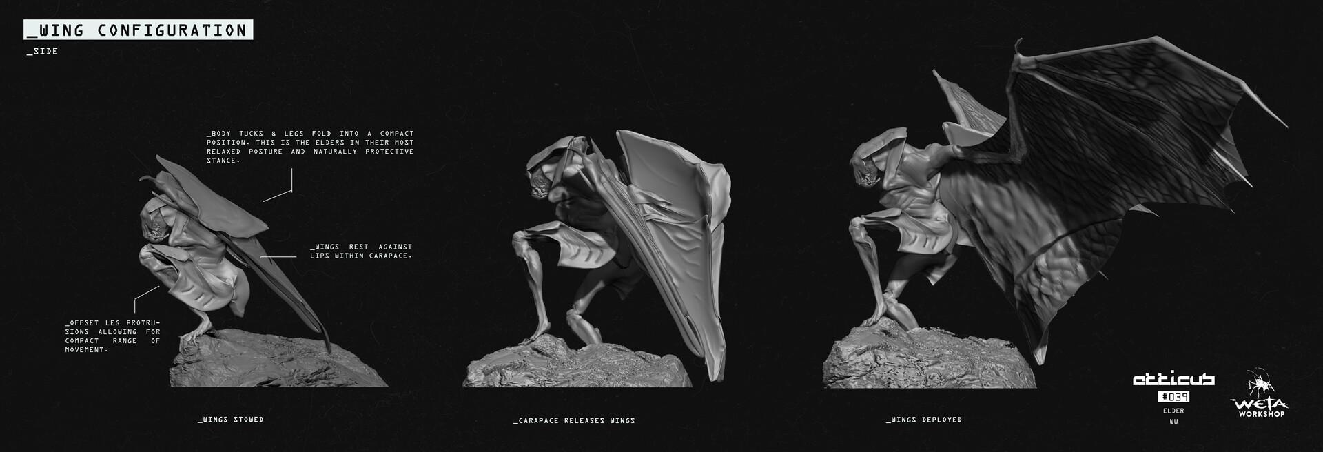 Elder Wing Configuration - Artists: Dane Madgwick + Russel Dongjun Lu + Greg Tozer