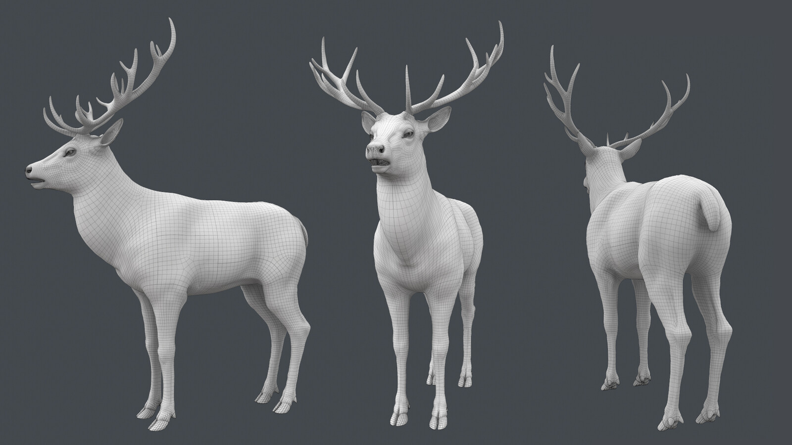 Deer from the film Peter Rabbit (topology).