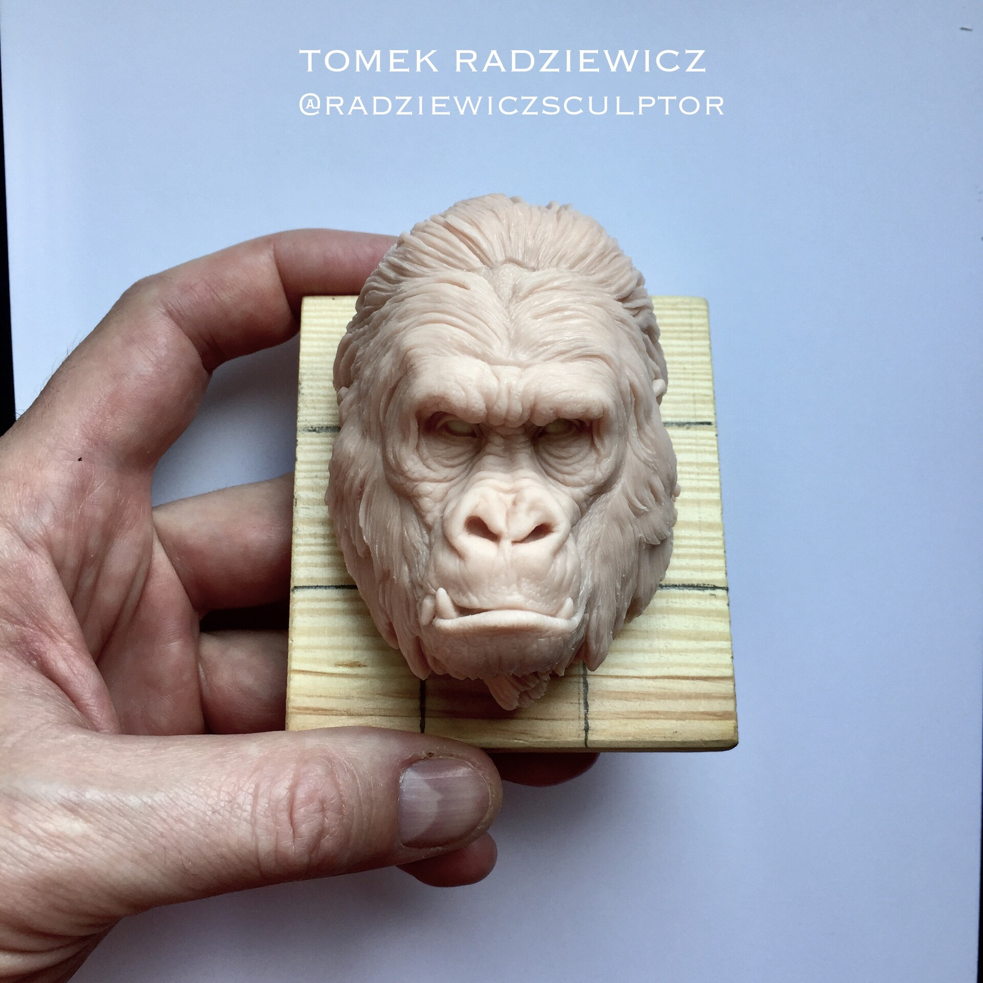 Gorilla face. It's hand made polimer clay sculpture.