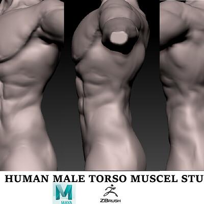 Subham roy torso