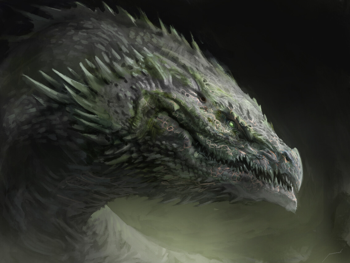 Dragon head study