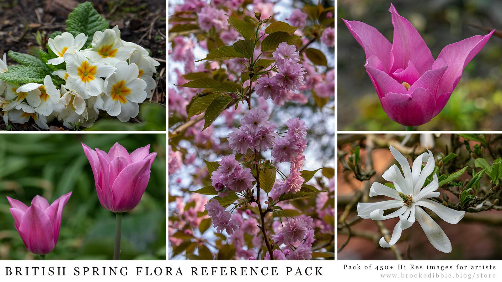 British Spring Flora reference pack