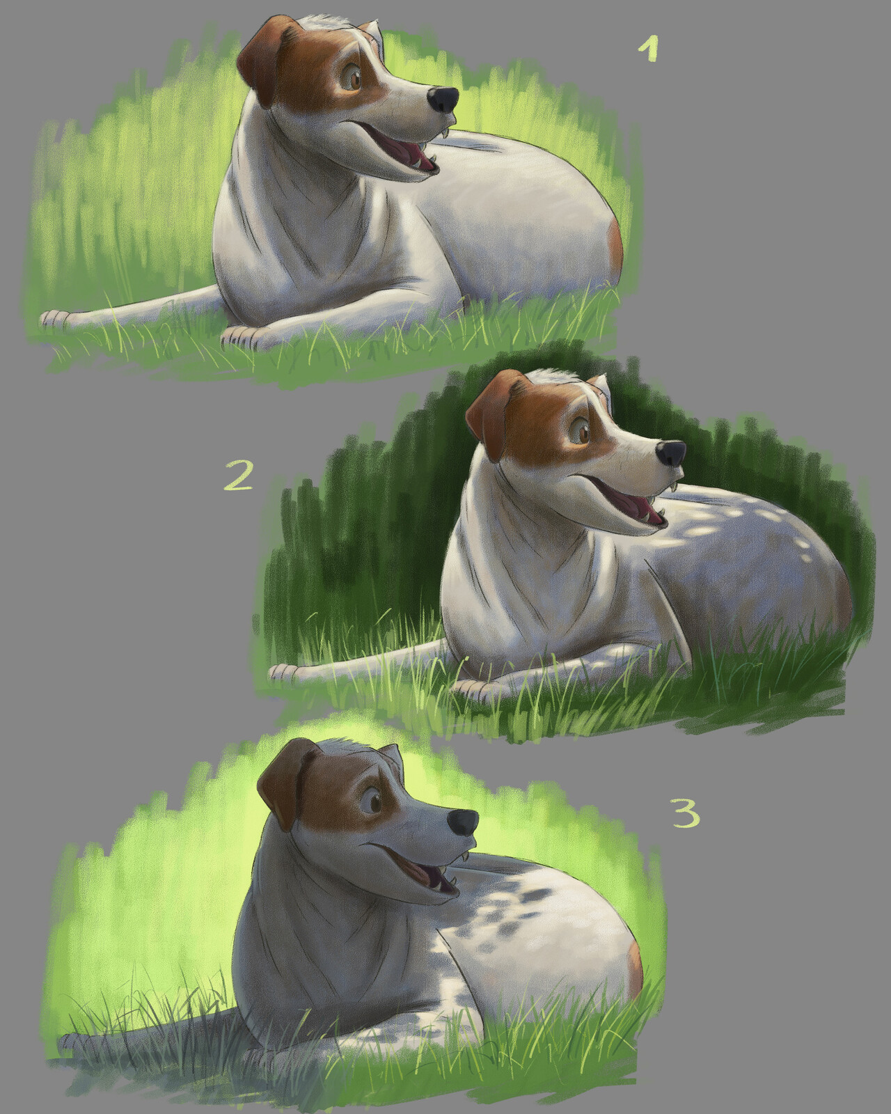 Light studies application
