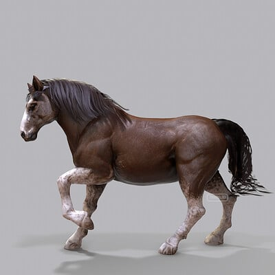 Tyler smith clydesdale07 02