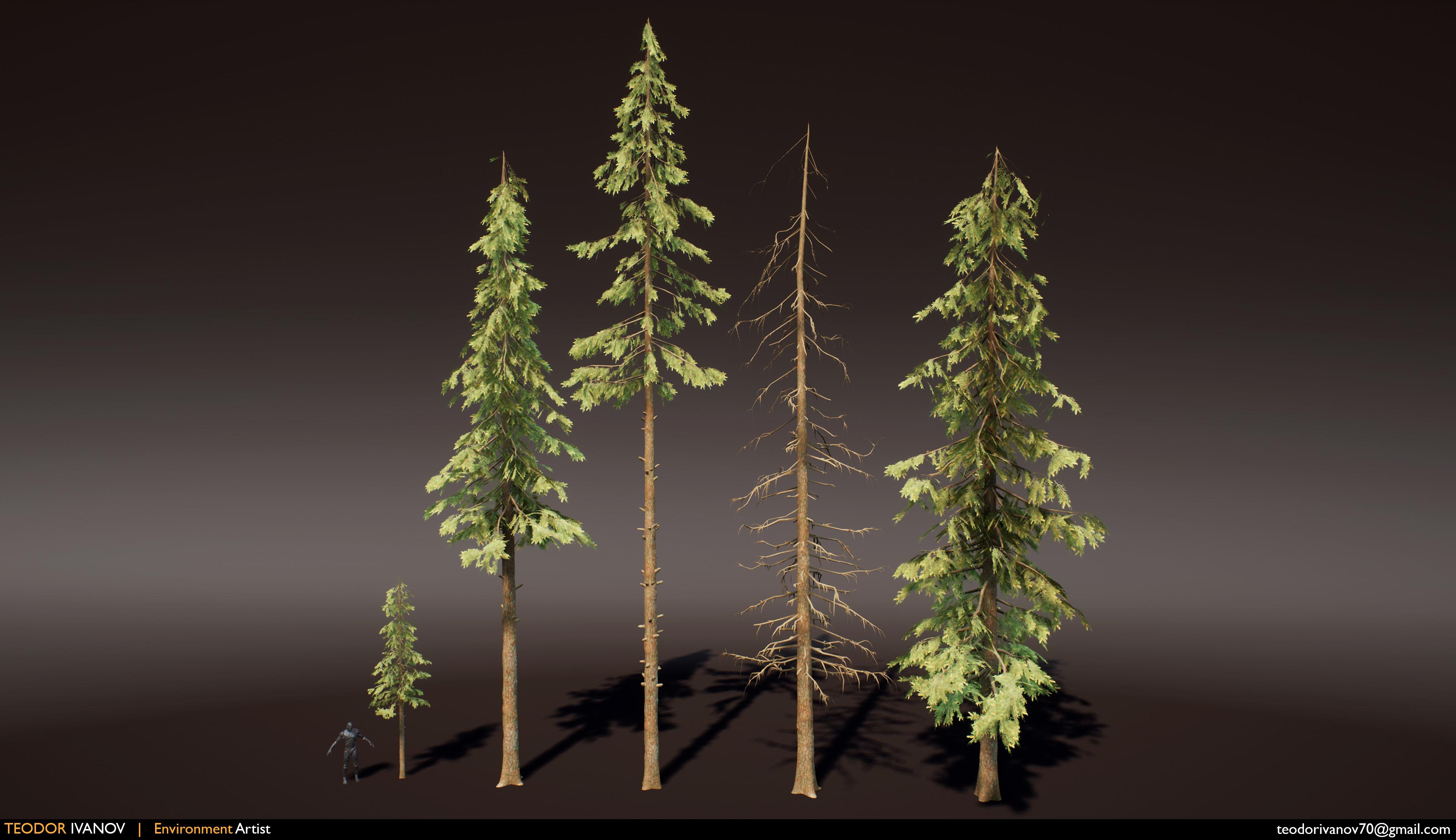 Tree variations.