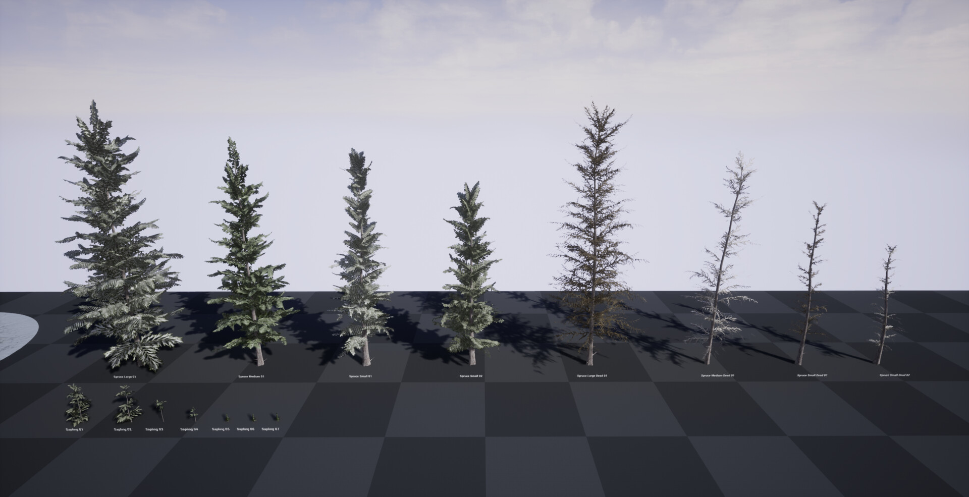 Variety of trees created for the scene.