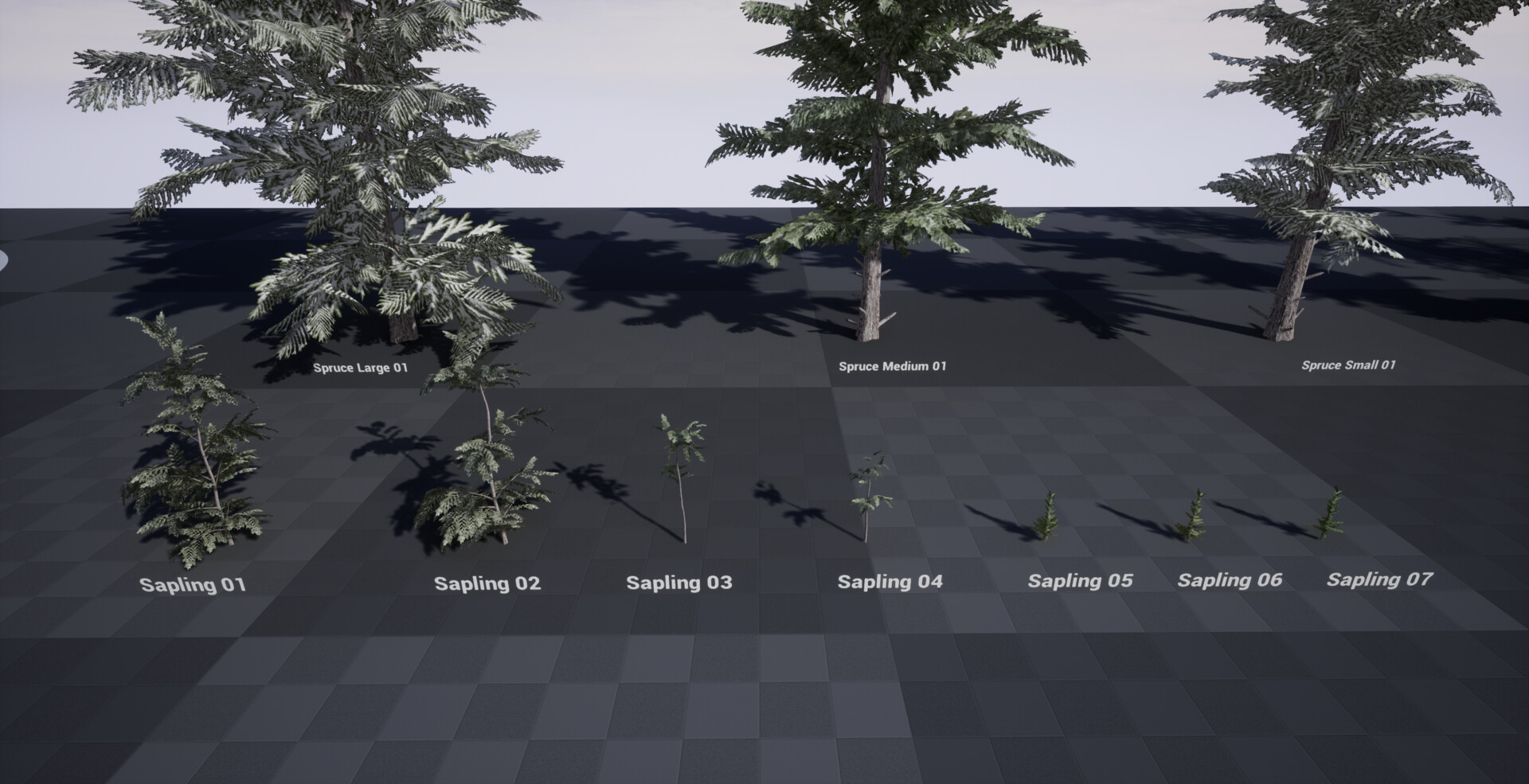 Sapling trees created for the scene.