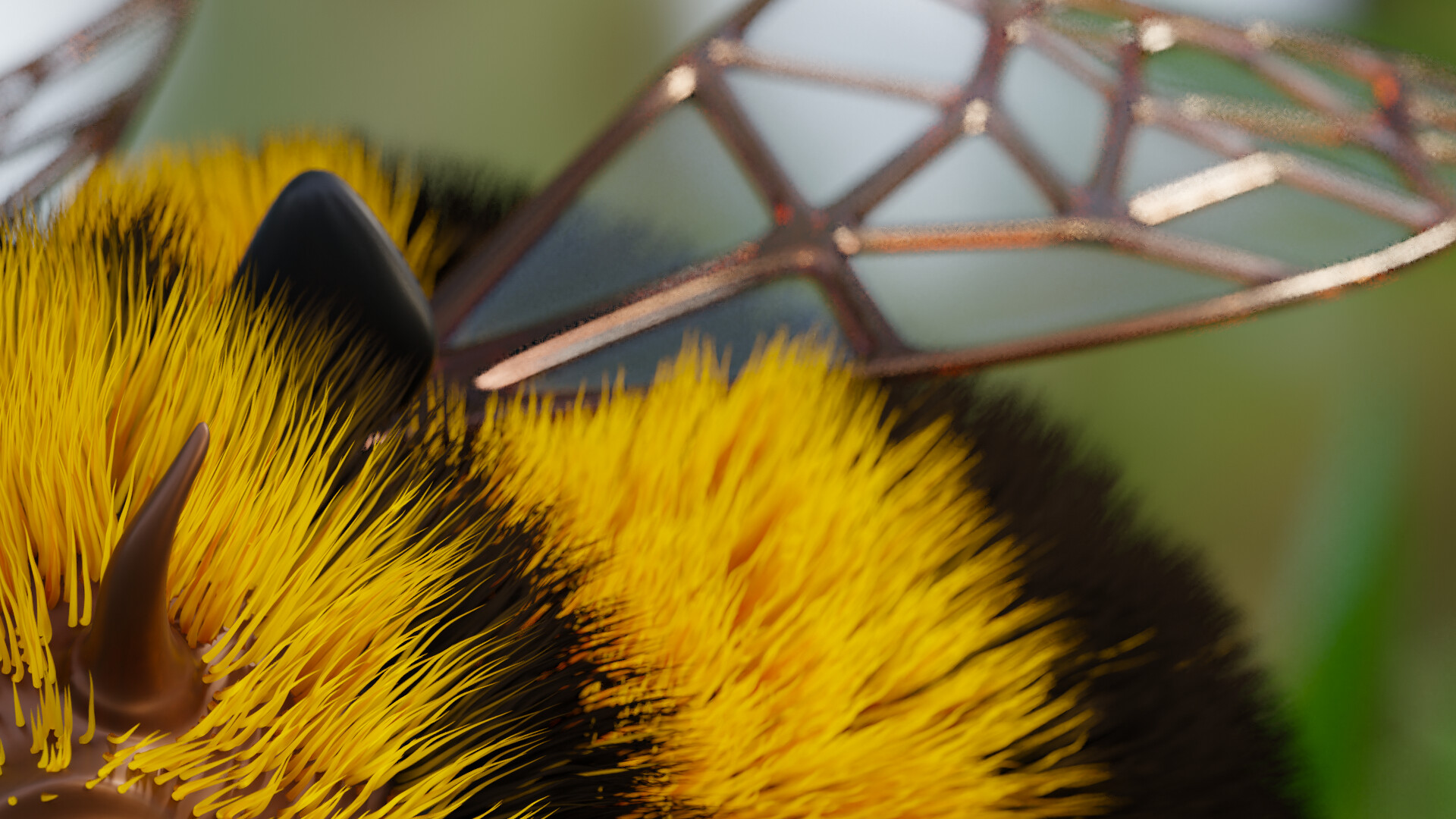 Close up of fur and wing