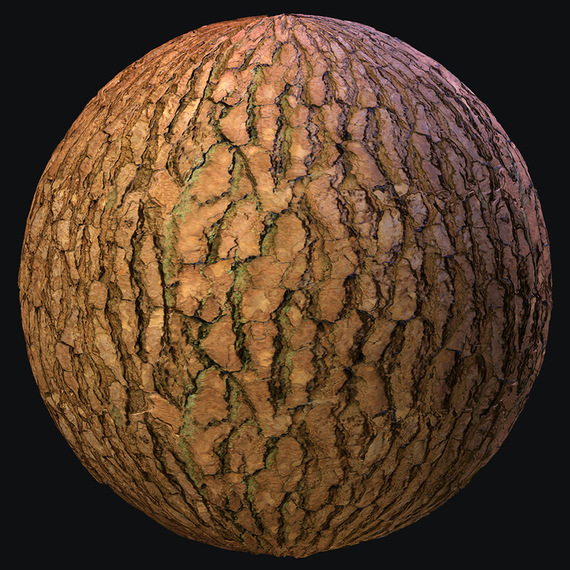 Tree Bark Photogrammetry Material + Breakdown