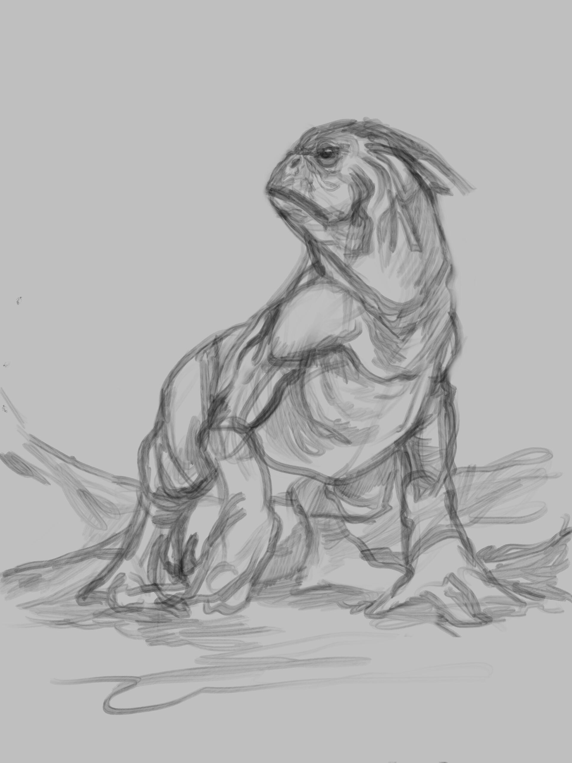 Pug lizard