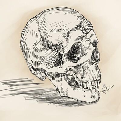 Amit kumar skull