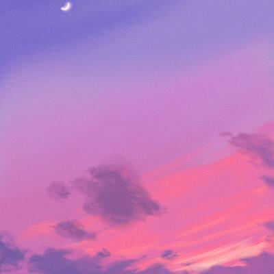 Ergo art sunset study