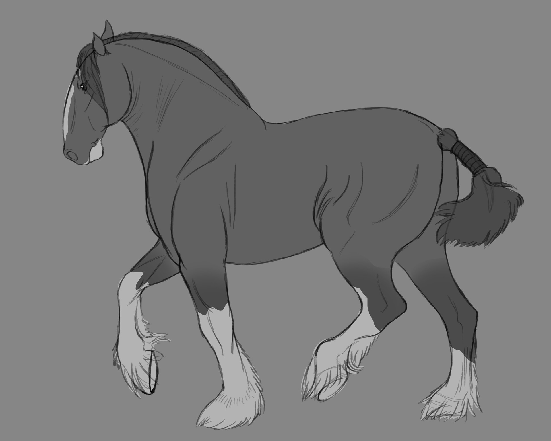 Artstation Shire Horse Animal Study Ekaterina Hearne