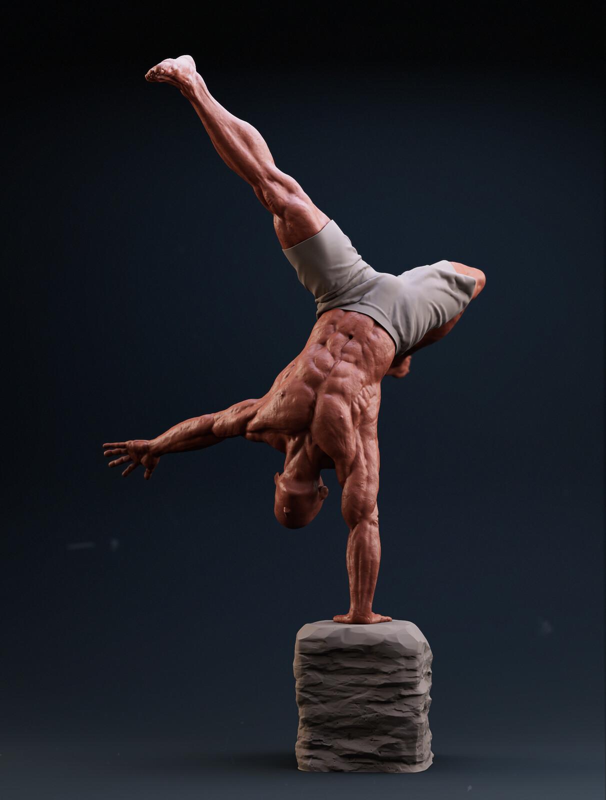 Handstand anatomy study