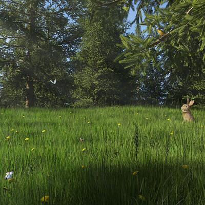 Jeffrey martinez morning meadow tg20200328