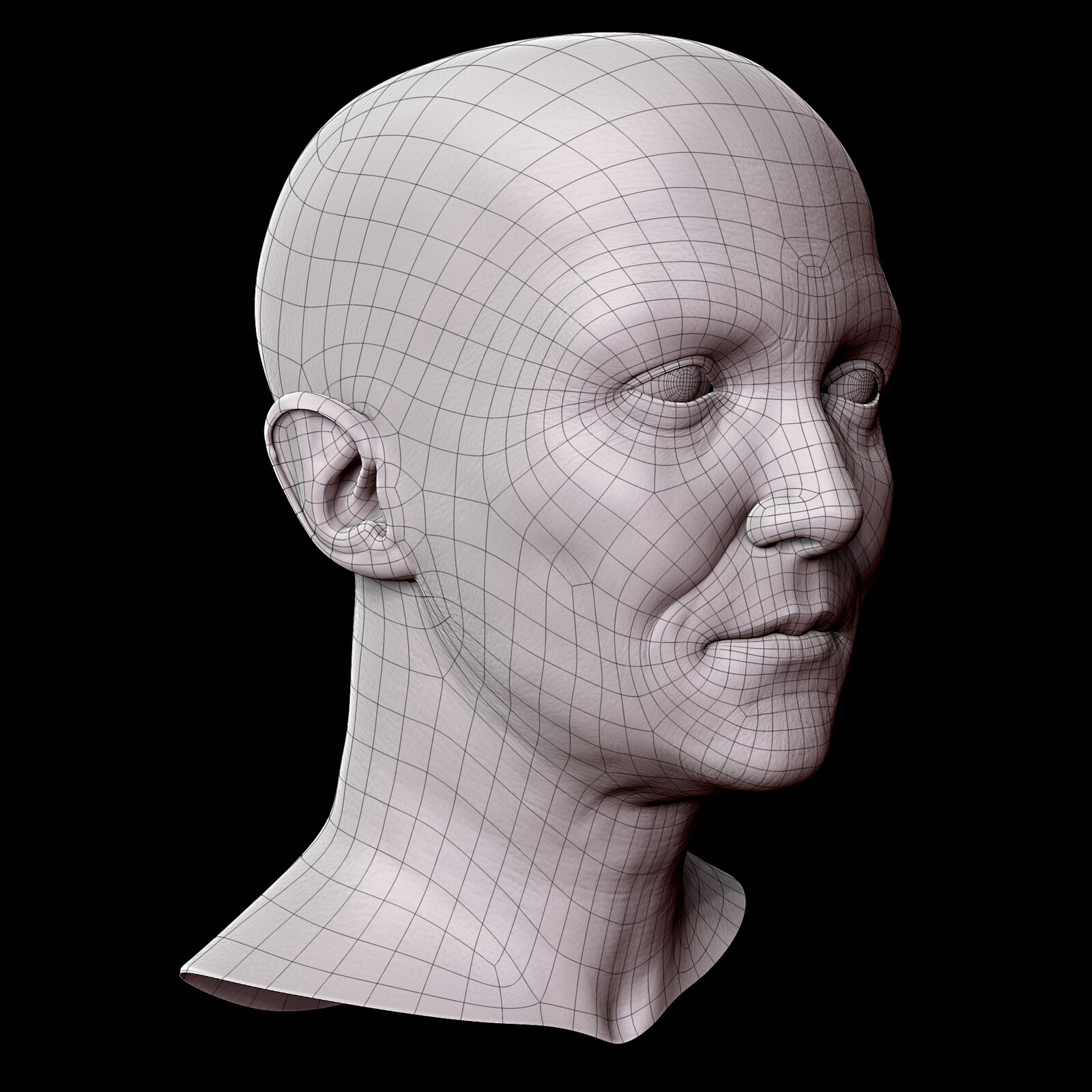 Retopologized Model Wireframe