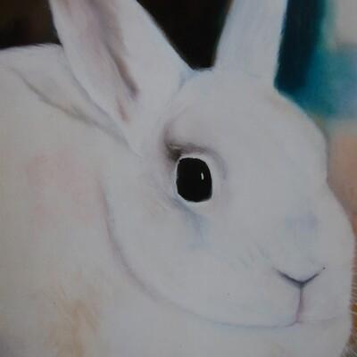 Kathy brosnan bunny ii
