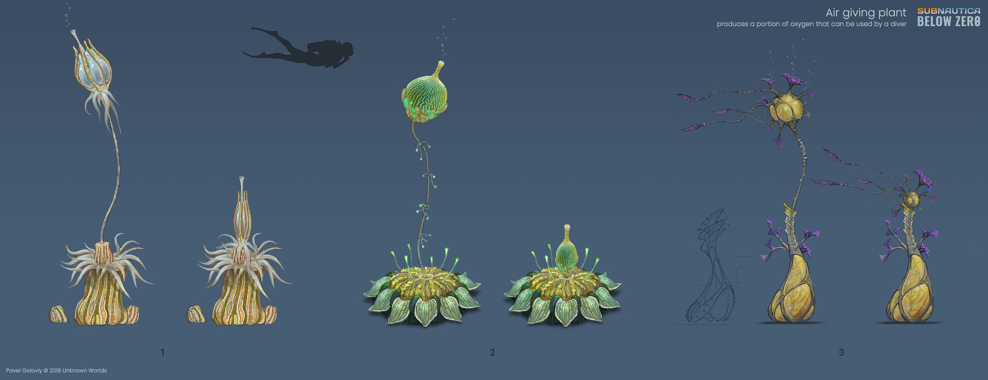 Air giving plant variants