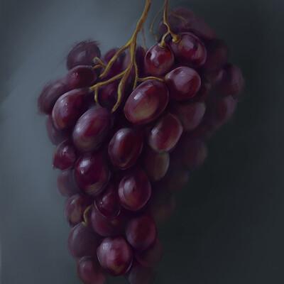 Jon hopkins grapes study jon hopkins art
