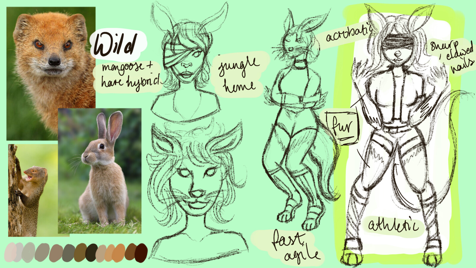 my initial ideas Aspen started off as being my wild character but I changed my mind as i wanted her to have a companion character