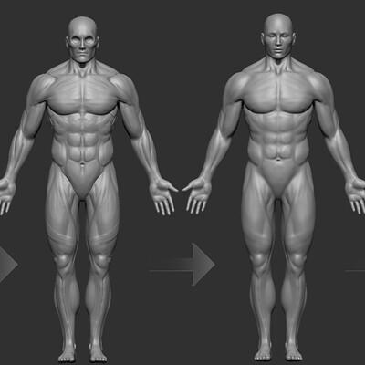 Robert ramsay anatomystudyprogress1