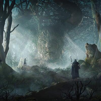 Maciej drabik forest front d2b sharp2