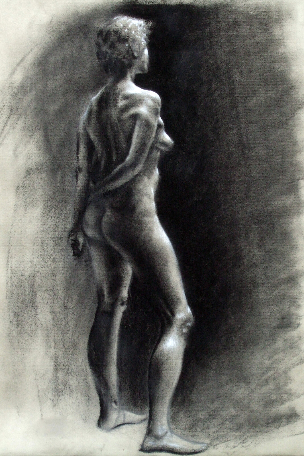 Life Drawings and Paintings