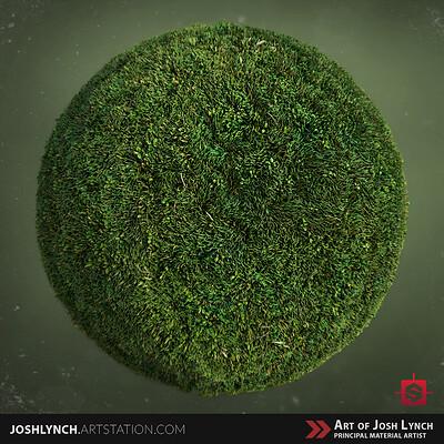 Joshua lynch ground grass 04 layout comp square