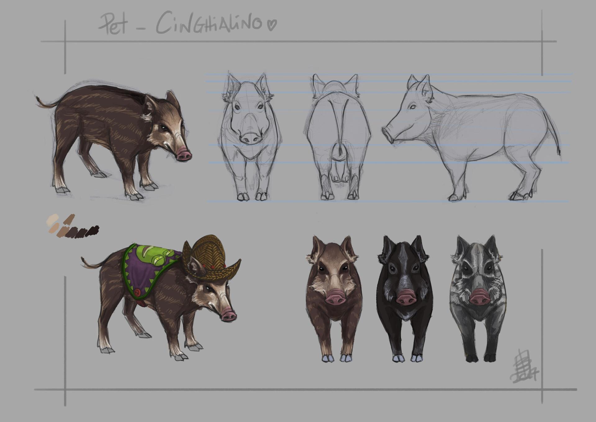 Pet concept art