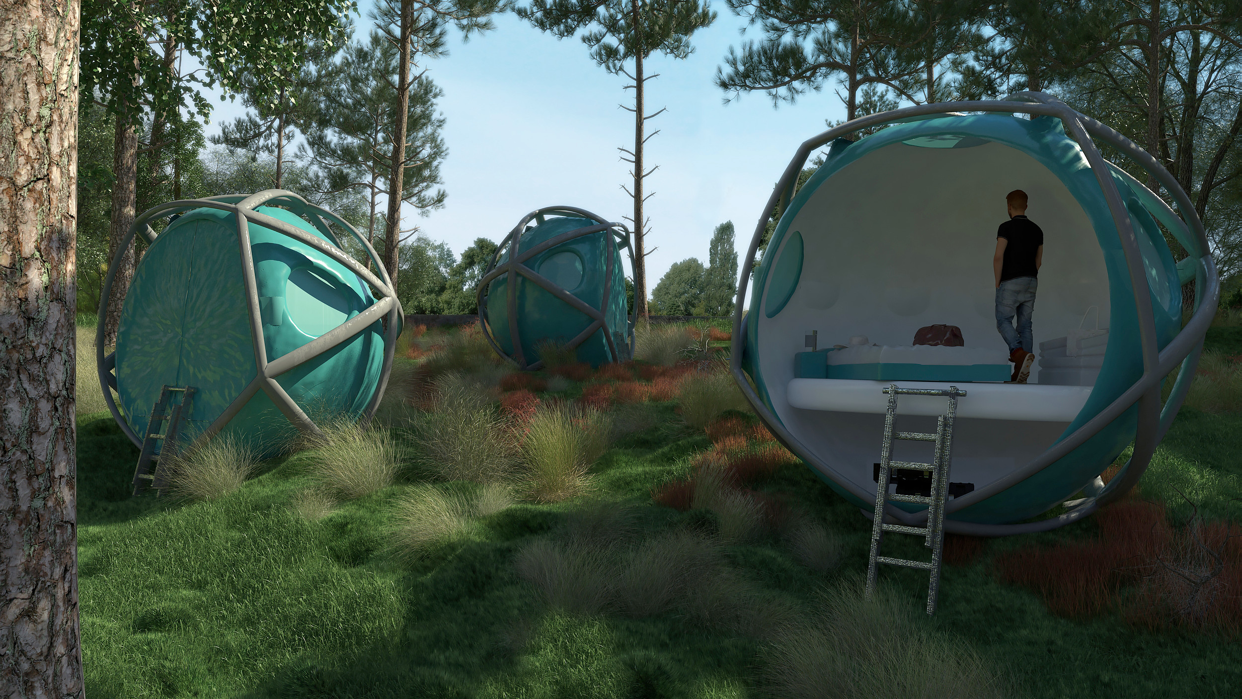 Forest Render with an inside view of the Capsule