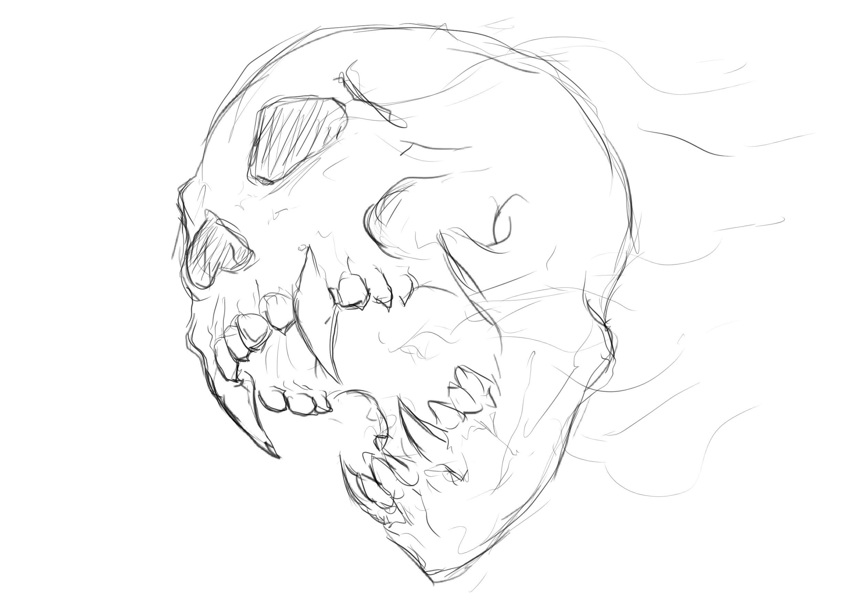 Sketch of a skull
